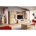 Living Room Furniture Link Wall Unit Set Oak